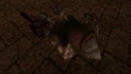Ogremarksman corpse
