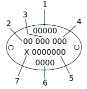Oval plate diagram
