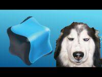 Qubo Episodes- Animal Atlas