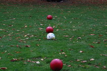 Quidditch Balls Lined Up Large