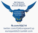 Copa de Europa de 2014