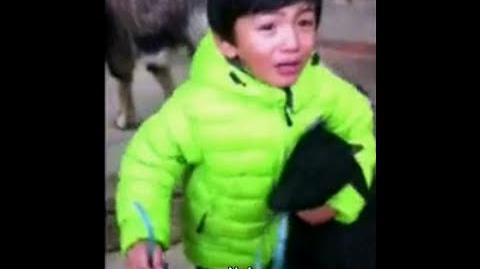 3 year old kid fighting to save his animal friend goat