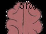L-Brain Sidework