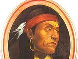 Põhja-Ameerika indiaanlased