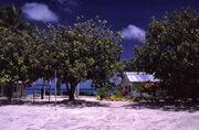 Tuvalu - Funafuti - School
