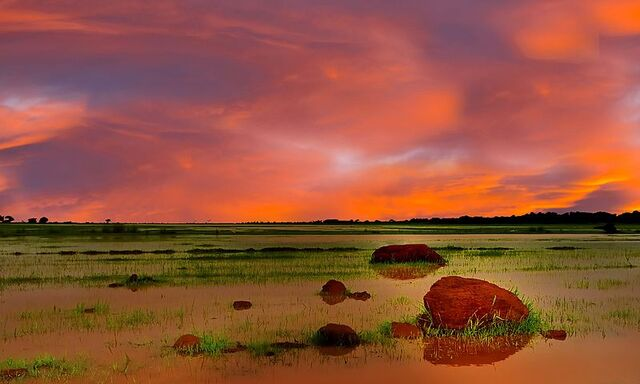 Under a African Sky - panoramio