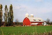 Wisconsinfarm