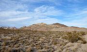 Amargosa desert