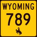 WY-789