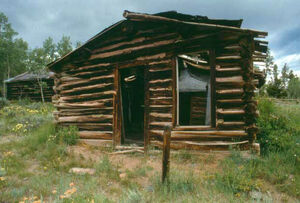 Miners delight cabin