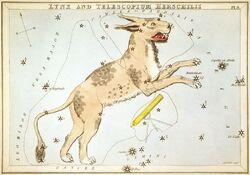 Sidney Hall - Urania's Mirror - Lynx and Telescopium Herschilii