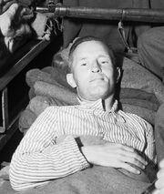 The Capture of William Joyce, Germany, 1945 BU6910