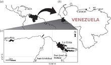 Tachiraptor range map