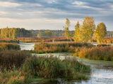 Losinõi Ostrovi rahvuspark