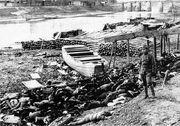 Nanking bodies 1937