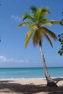 1859-Martinique.web