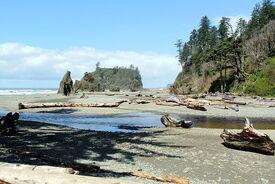 Cedar Creek Abbey Island Ruby Beach