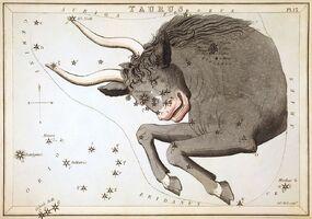 Sidney Hall - Urania's Mirror - Taurus