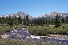 Dana Meadows Yosemite