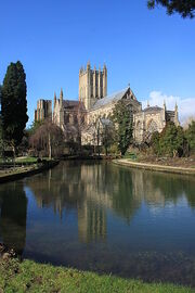 Wells Cathedral in the reflecting pool in the grounds of the Bishops Palace