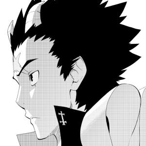 Piodon manga