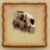 Bear Skull RSC