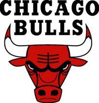 Chicago bulls logo-9781