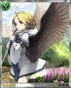 Avian Maiden