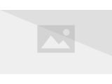 Frost Crystal