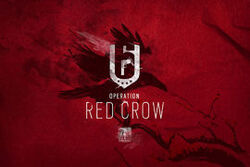 R6S-red-crow-image