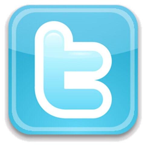 File:Twitter icon.jpg