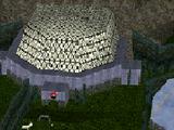 Rainforest 2000