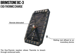 Thermite exothermic charge