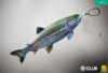 Rainbow Trout Charm Reward