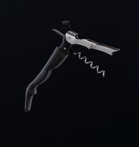 Corkscrew Charm
