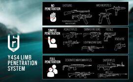 Limb Penetration System