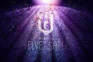 Operation Velvet Shell Image