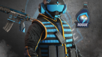 Rogue 2019 Pilot Program