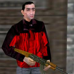 Vezirzade's guard