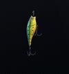 Fish Hook Charm