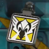 Valkyrie's Icon Charm