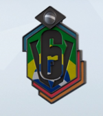 Team Brazil 2020 Charm