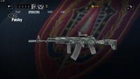 AK-12 Paisley