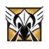 Valkyrie badge