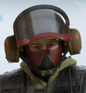 Bandit Flycatcher Headgear