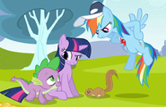 Twilight Sparkle Rainbow Dash Spike Squirrel S02E22
