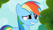 1000px-Rainbow dash awkward smile S2E08