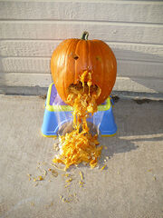 Naseous pumpkin pukes out its guts