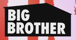 Random Big Brother - Double Trouble Logo