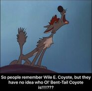 Bent-Tail vs Wile E. Coyote